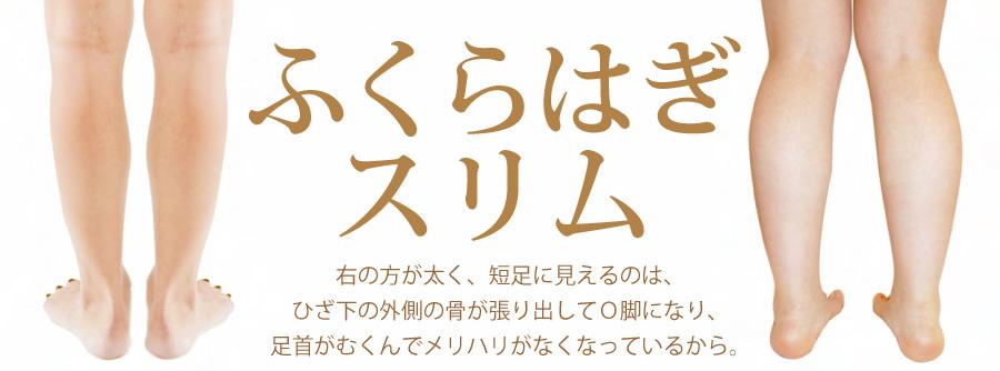 fukurahagi_01