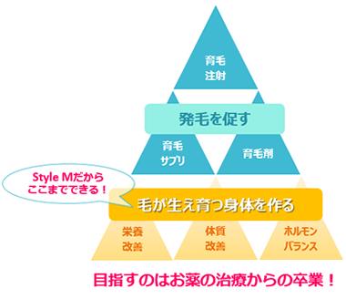 育毛治療ピラミッド