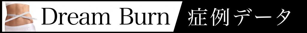 dreamburn_monitor_data