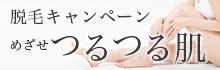2017脱毛キャンペーン
