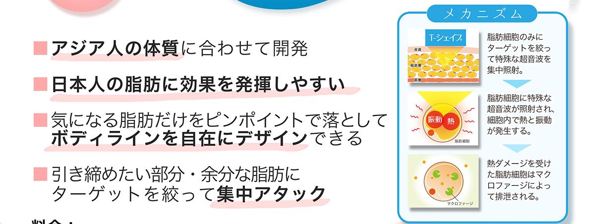 アジア人の体質に合わせて開発 日本人の脂肪に効果を発揮しやすい 気になる脂肪だけをピンポイントで落としてボディラインを自在にデザインできる 引き締めたい部分・余分な脂肪にターゲットを絞って集中アタック