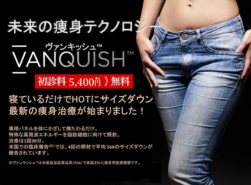 main_vanquish