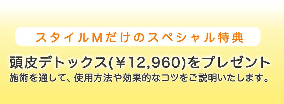 スタイルMだけのスペシャル特典 頭皮デトックス(¥12,960)をプレゼント 施術を通して、使用方法や効果的なコツをご説明いたします。 電気バリブラシ 電気針ブラシ  購入